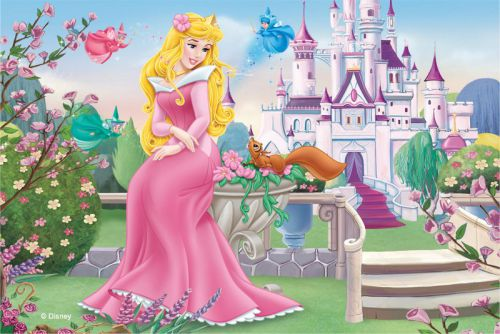 Princess Aurora ~ Cartoon Image Galleries